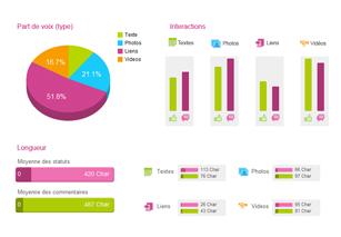 ex pageanalyzer 3 Évaluer et mesurer lefficacité de votre stratégie Facebook
